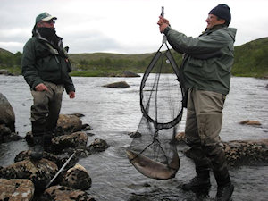 Ura netting a fish for Nick from Prunella on Rynda click on image to enlarge