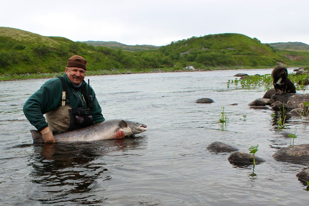 atlantic_salmon_reserve_2017