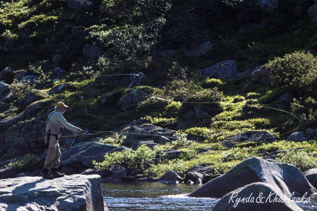 atlantic_salmon_reserve_2018_wk27